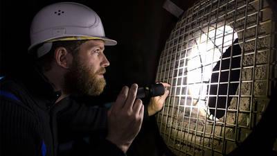 Nouvelle gamme de lampes torche LED et frontales Ledlenser pour les professionnels