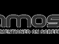 Test et avis désherbeur Amos pas cher